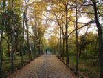 Botanic garden, Yerevan